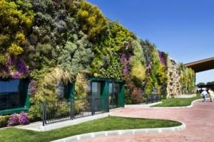 manfaat vertical garden