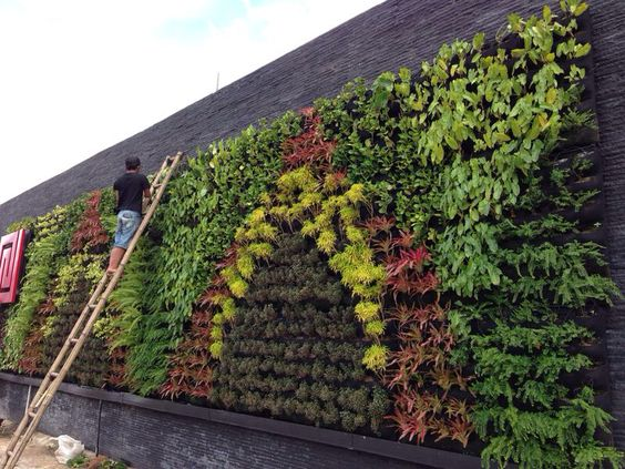 Vertical Garden Indonesia