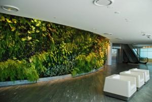 Vertical Garden Indoor Depok