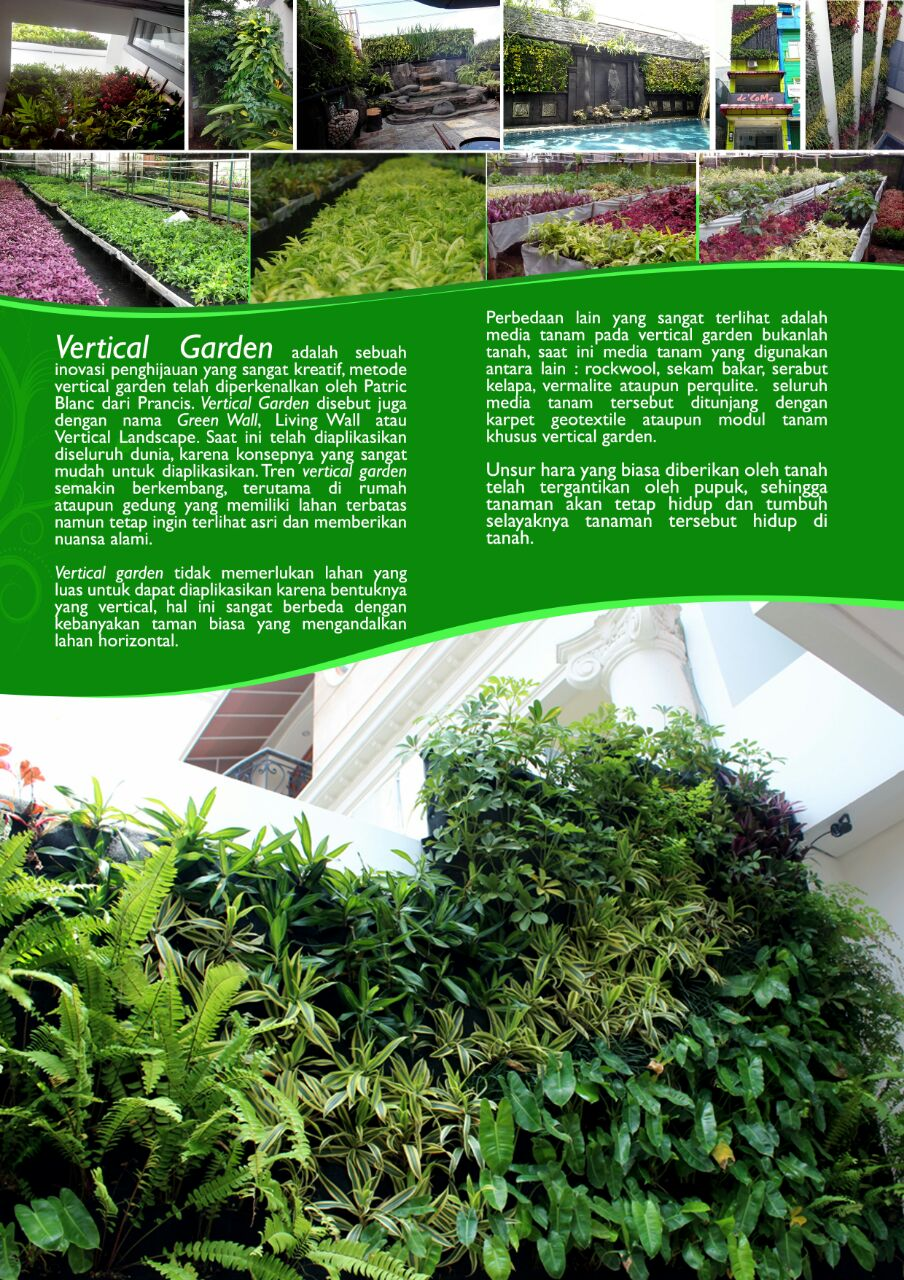 Vertical Garden Indonesia Murah