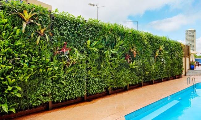 Vertical Garden dan Landscape