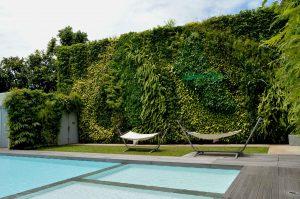 Perbaikan Vertical Garden