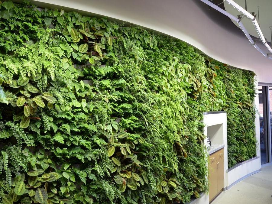 Taman Vertical garden Artificial di jakarta