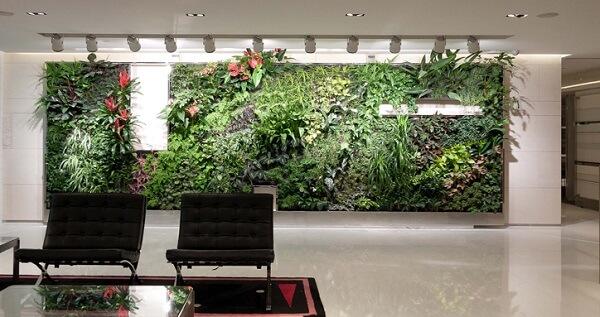 Vertical Garden Indoor