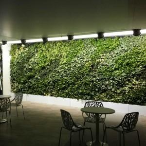 Vertical Garden Indoor Tangerang