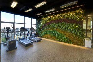 Vertical Garden Indoor Terbaik