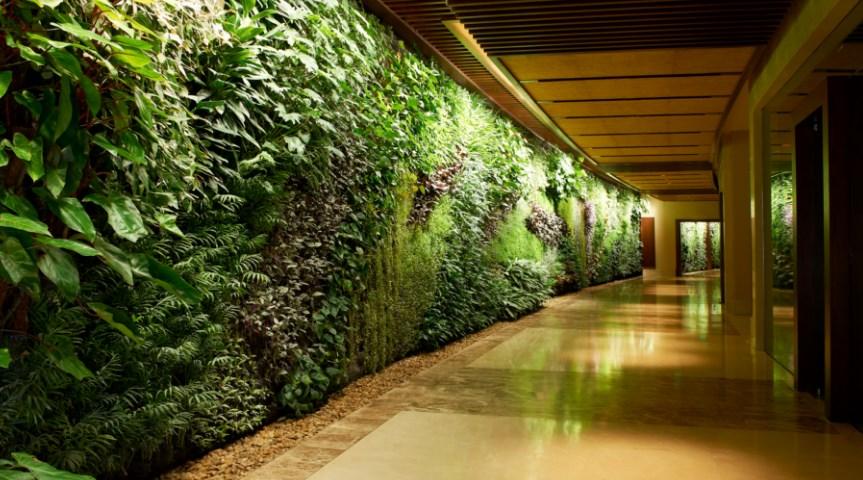 Tukang Taman Vertical Garden Jakarta Barat